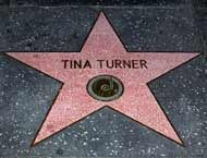 hollywood walk stars_tina turner_001